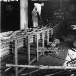 İnegöl, Mobilya Fabrikası keresteler 1983